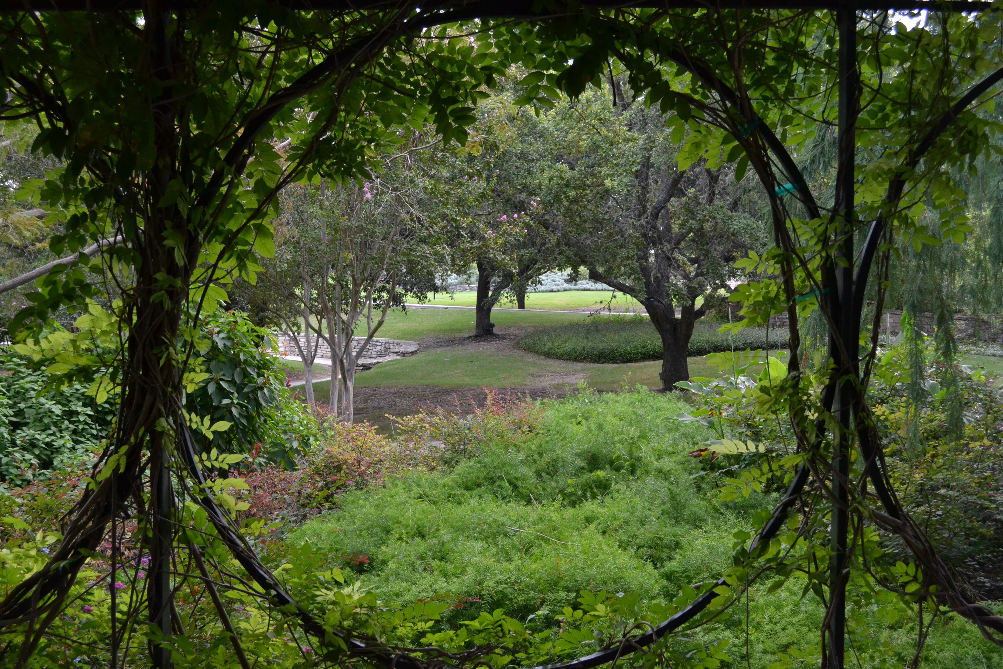 jardin botanica
